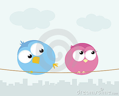 Flirting birds