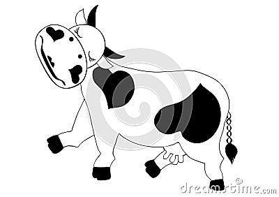 Flirting cow