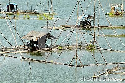 Floating cottage, governing fishing