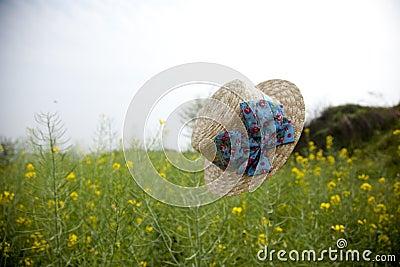 Floating hat in rape flower field