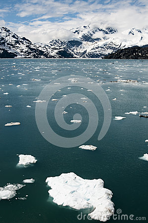 Floating ice in Glacier Bay, Alaska