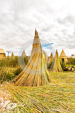 Floating Islands on Lake Titicaca Puno, Peru, South America, thatched home. Dense root that plants Khili