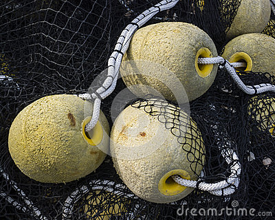 Floatings and net for fishing