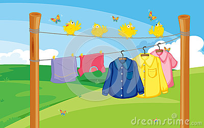 A flock of birds near the hanging clothes
