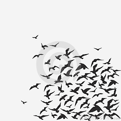 Free FLOCK OF BIRDS Royalty Free Stock Photography - 13925447