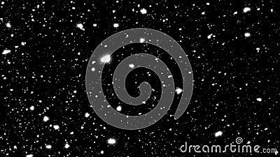 Flocons de neige tombant vers le bas sur le fond noir Animation de bouclage illustration libre de droits