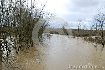 Flood in the countryside