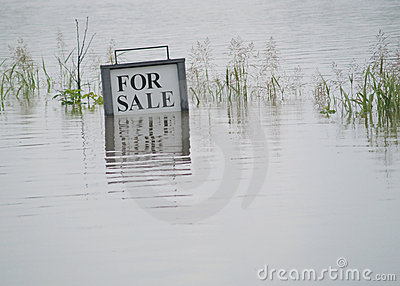 Flooded Land For Sale Editorial Stock Photo