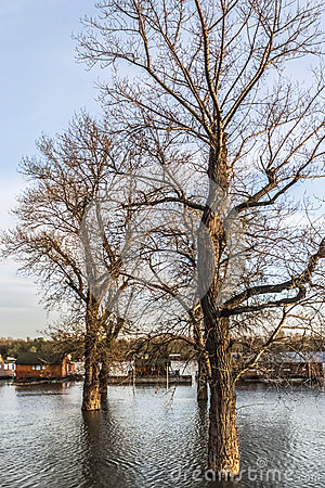 Free Flooded Land With Floating Houses At Sava River - New Belgrade - Royalty Free Stock Images - 37085859