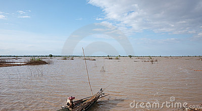 Flooded rice fields in Cambodia
