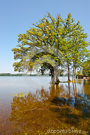 Flooding Stock Photos - Image: 28854013