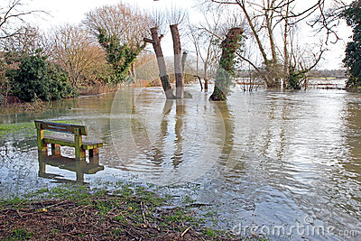 Floods with bench and trees.