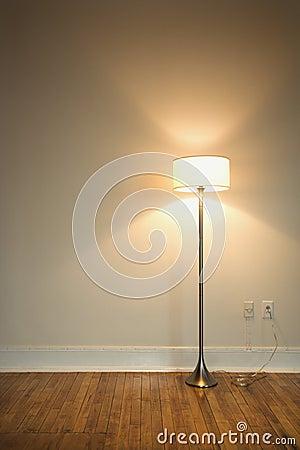 Floor lamp on hardwood floor.