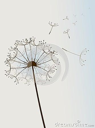 Flor en el viento.