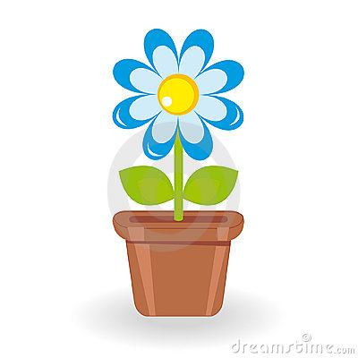 Flor en maceta en el fondo blanco imagenes de archivo - Flores de maceta ...