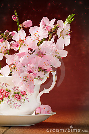 Flor en taza de té