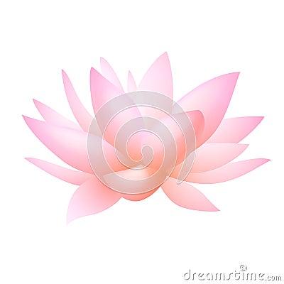 Flor rosada del lirio del loto o de agua. Vector
