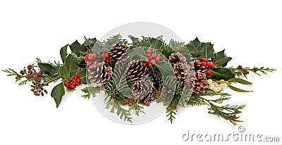 Flora e fauna do inverno