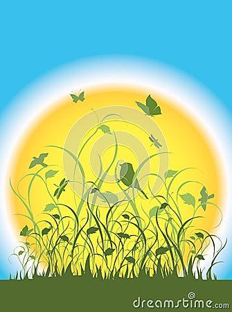 Flora, fauna and a large sun