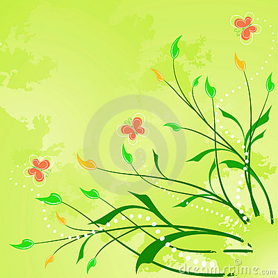 Floral abstract background with  butterfly