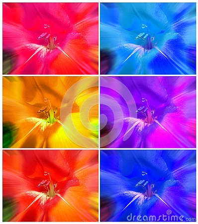 Free Floral Abstract Colorful Backgrounds Collage Royalty Free Stock Photography - 88086037