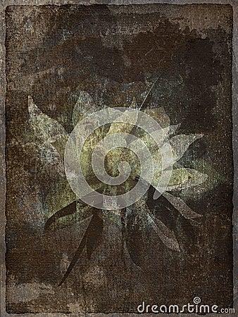 Floral art motive