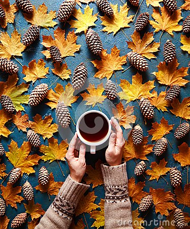 Free Floral Autumn Background. A Mug Of Coffee In A Woman`s Hands On The Green Background With Yellow Maple Leaves And Cones Stock Image - 100112941