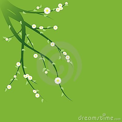 Free Floral Background 01 Royalty Free Stock Photography - 1997437