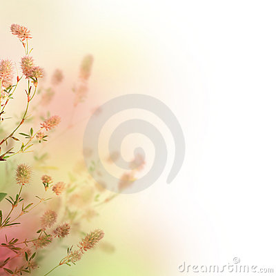 Free Floral Background Royalty Free Stock Photography - 11636217