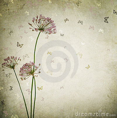 Free Floral Background Stock Images - 13135244