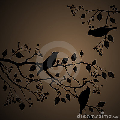 Floral Background, birds