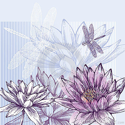 Floral background with blooming water lilies and d