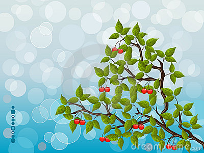 Floral background with a cherry