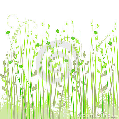 Floral background, meadow