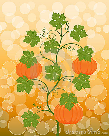 Floral background with a pumpkin