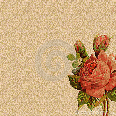 Floral background with vintage rose decoration