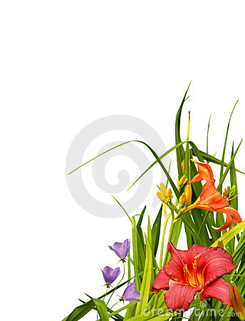 Free Floral Border Corner Royalty Free Stock Photography - 15879147