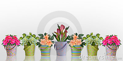 Floral border Flowers in colorful containers