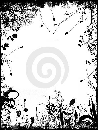 Floral border and frame