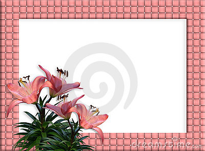 Floral Border woven frame Pink Lilies