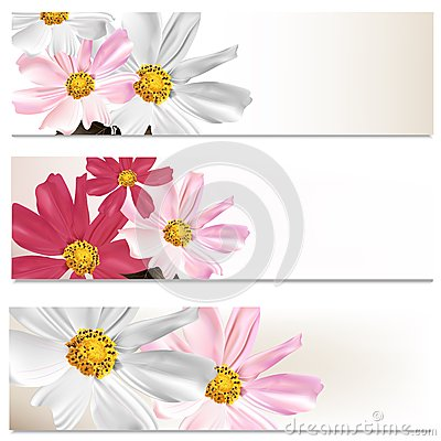 Floral brochures set for design