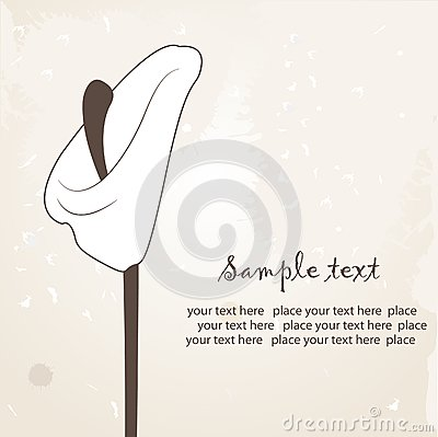 Floral card with calla lily flower.