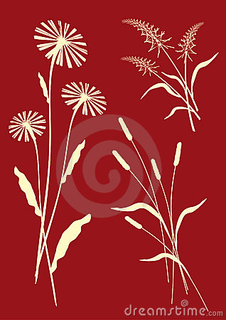 Floral compositions - vector