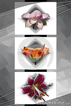 Floral Cubism 2