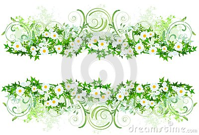Floral decoration with white daisies