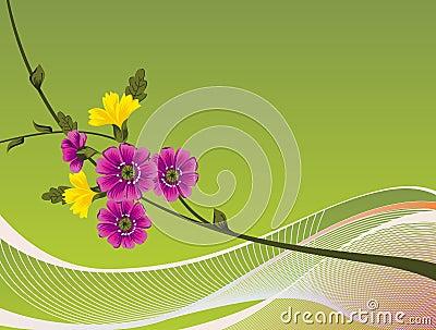 A floral Design Background