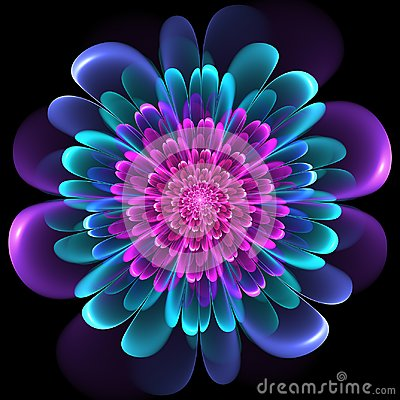 Free Floral Design With Whorled Spiral Petals Stock Images - 103482724