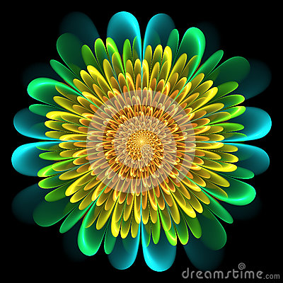 Free Floral Design With Whorled Spiral Petals Royalty Free Stock Photo - 79412995
