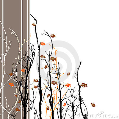 Floral Fall Background