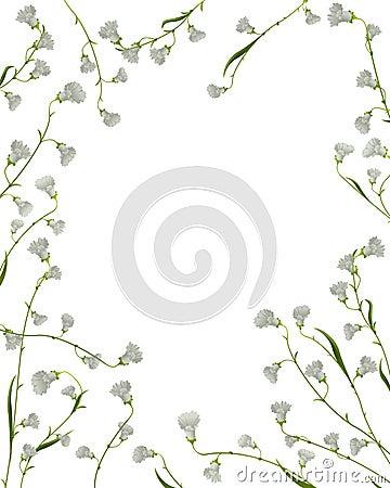 A floral frame